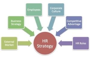 عوامل و پارامترهای موثر در فرایند تدوین استراتژی های منابع انسانی